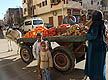 EGY09VJB092 Young girls & woman in hijab at cart where men sell oranges, tomatoes & potatoes; street market stall. Luxor, Egypt. Copyright Tropix (V. and M. Birley)