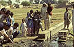 PAK89TX30_10 Health Impact Assessment delegates inspect open village drain for mosquito larvae; pollution; near Lahore, Pakistan. Copyright Tropix (V. and M. Birley)