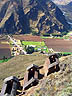 PER07RB138 Livestock pens on Sierras; cultivated fields, village, football pitch, in Sacred Valley; Andes Mtns, Cusco Rgn, Peru. Copyright Tropix (Roland Birley)