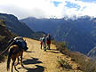 PER07RB173 Laden donkey follows trekkers along hilly path, distant clouded mountains. Choquequirao trek, Sacred Valley, Andes, Peru Copyright Tropix (Roland Birley)