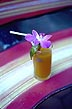 THA88TX8_01 Glass of orange juice served with a purple orchid flower for decoration. Wan Tai Hotel, Surat Thani town, S.Thailand. Copyright Tropix (V. and M. Birley)